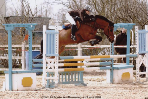 Saut d'obstacles